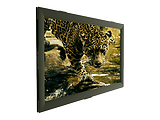 Sopar ARIES 8252AR Fixed Frame Projection Screen 250x140cm / Black